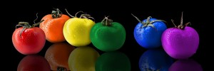 tomatoes-different colors